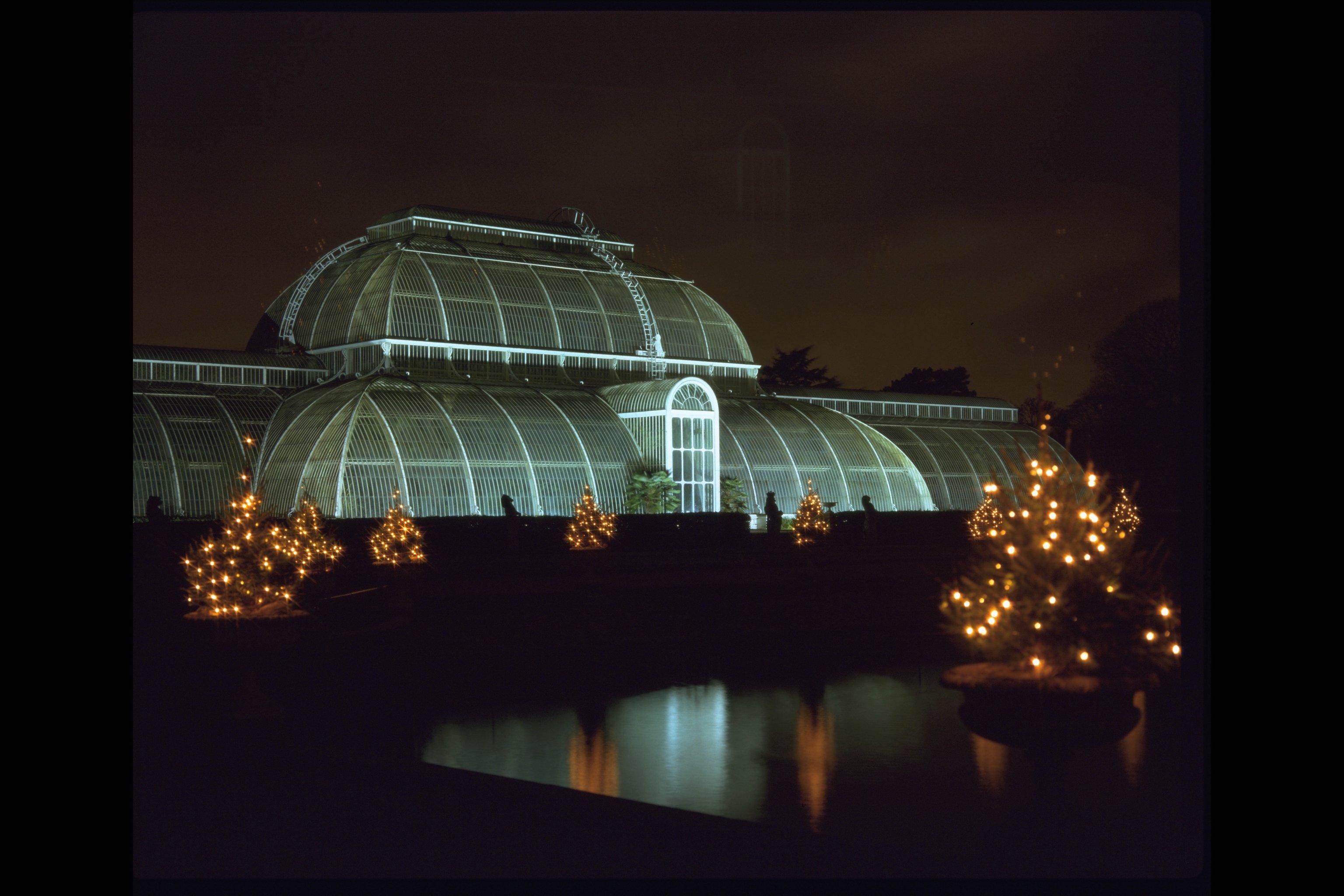 discover a winter wonderland at kew gardens londonlovelies